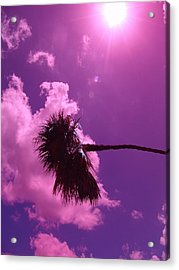 Shine On Me Acrylic Print by Florene Welebny