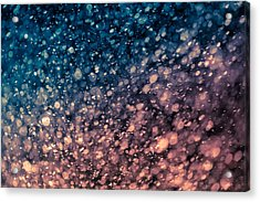Acrylic Print featuring the photograph Shine by TC Morgan
