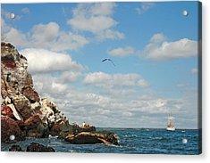 Ship Off Shore Acrylic Print by Alan Lenk