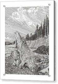 Shipwrecked Acrylic Print by Jack Pumphrey