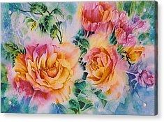 Shirleys-roses Acrylic Print by Nancy Newman