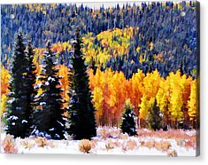Acrylic Print featuring the photograph Shivering Pines In Autumn by Diane Alexander