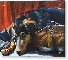 Shoe Dog Acrylic Print by Nik Helbig
