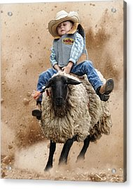 Shoot Low Sheriff They're Riding Sheep Acrylic Print by Ron  McGinnis