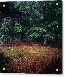 Shooting Stars Ravello Acrylic Print by Martin Sugg