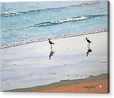 Shore Birds Acrylic Print by Mike Robles