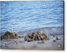 Shore View Acrylic Print by Lakida Mcnair