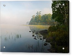 Shoreline Trees And Grasses Along Nina Acrylic Print by Panoramic Images