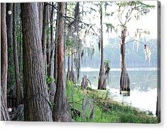 Shores Of Compass Lake Acrylic Print