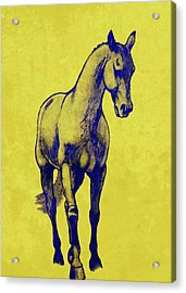 Shoulder-in Duotone Acrylic Print by JAMART Photography