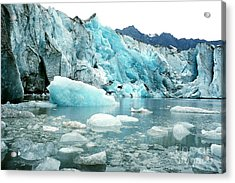 Shoup Glacier Acrylic Print by Frank Townsley