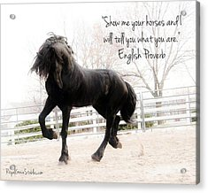 Show Me Your Horse Acrylic Print