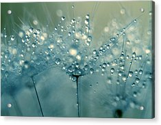 Shower Blue Acrylic Print