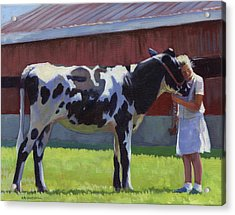 Showing The Heifer Acrylic Print