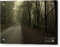 Shrouded Path Acrylic Print by J L  Gould