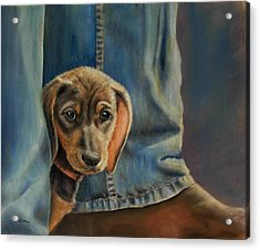 Acrylic Print featuring the painting Shy Boy by Ceci Watson
