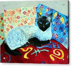 Siamese Cat Acrylic Print