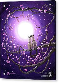 Siamese Cats In Pink Blossoms Acrylic Print by Laura Iverson