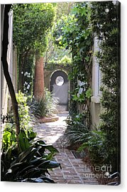 Side View Acrylic Print by B Rossitto