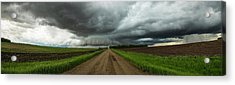 Acrylic Print featuring the photograph Sidewinder by Aaron J Groen