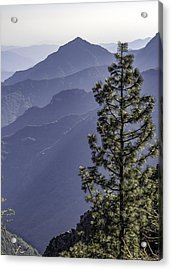Sierra Nevada Foothills Acrylic Print by Steven Sparks