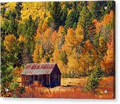 Sierra Solitude Acrylic Print