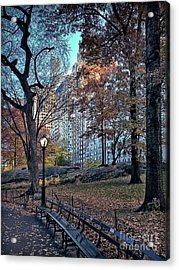 Acrylic Print featuring the photograph Sights In New York City - Central Park by Walt Foegelle