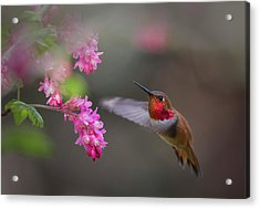 Sign Of Spring Acrylic Print by Randy Hall