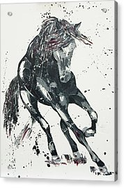 Significance Acrylic Print by Penny Warden