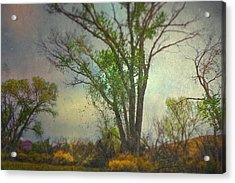 Acrylic Print featuring the photograph Signs  by Mark Ross