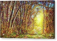Silence Of A Forest Path Acrylic Print