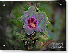 Silence Of Beauty Acrylic Print