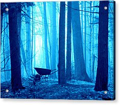 Acrylic Print featuring the photograph Silent Forest by Al Fritz