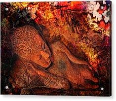 Silent Harmony Acrylic Print by Joachim G Pinkawa