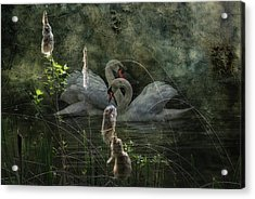 Silent Love Acrylic Print by Joachim G Pinkawa