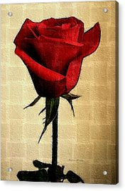Silent Love Acrylic Print by Madeline  Allen - SmudgeArt
