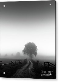Acrylic Print featuring the photograph  Silent Morning  by Franziskus Pfleghart