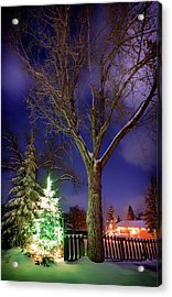 Acrylic Print featuring the photograph Silent Night by Cat Connor