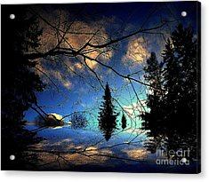 Acrylic Print featuring the photograph Silent Night by Elfriede Fulda