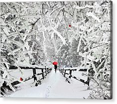 Silent Walk In The Snow Acrylic Print