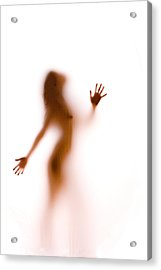 Silhouette 27 Acrylic Print by Michael Fryd