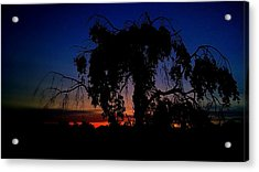 Silhouette Acrylic Print by Kevin D Davis