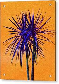 Silhouette On Orange Acrylic Print by Margaret Saheed