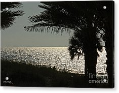 Silhouetted Sunset Acrylic Print