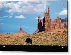 Silhouetted Tree At Monument Valley Acrylic Print