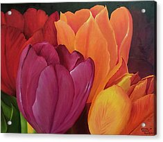 Silky Tulips Unite  Acrylic Print