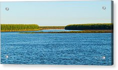 Silt Islands And Banks Mississippi River Delta Louisiana Acrylic Print