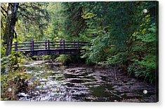 Silver Creek Falls #38 Acrylic Print