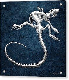 Silver Iguana Skeleton On Blue Silver Iguana Skeleton On Blue  Acrylic Print