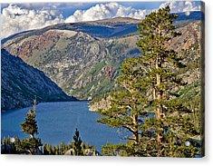 Silver Lake Pines Acrylic Print by Chris Brannen